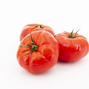 tomate super steak potager